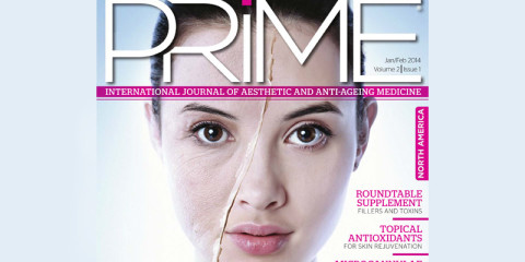 ZOr Article in Prime Journal – The Inconvenient Truth About Product Diversion